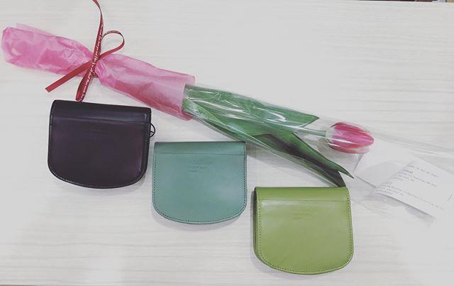 気持ちもふくらむサイフの日です新作も入荷中です可愛いお財布とお花と一緒に春を迎えませんか#サックスバーアミュプラザ鹿児島 #アミュプラザ鹿児島#サイフの日 #サックスバーマガジン #マーガレットハウエル #緑のお財布#運気up #jqカード5%オフ#アミュハッピーデイズ
